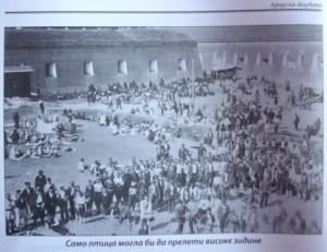 Aradska tvrđava 3